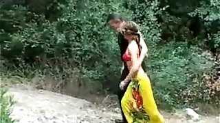 Duo Having intercourse Outside In The forest